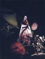 Janaina Tschäpe, A Botanist's Dream 5, 2006, Polaroid, 9 1/2 x 71/2 inches, Courtesy of the Artist and Sikkema Jenkins & Co