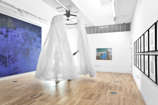 In foreground Ann Hamilton, Filament II, 1996, Organza fabric, steel mount with electronic controller, Dimensions variable, Collection Irish Museum of Modern Art, Purchase, 2002. Installation view Luan Gallery, Athlone, 2012. Photo: Corin Bishop Photography