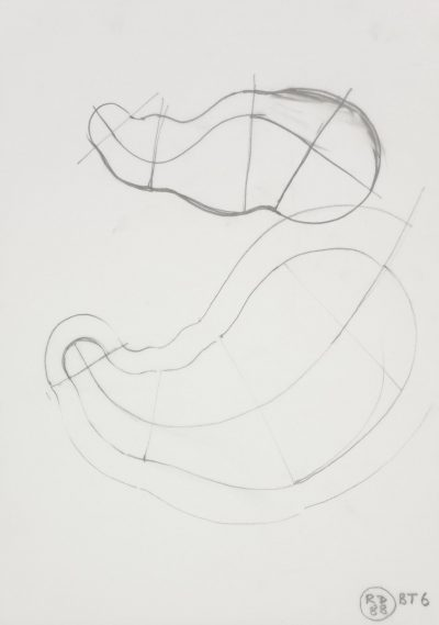 Preliminary drawing for Body of Thought No I (BT 6)