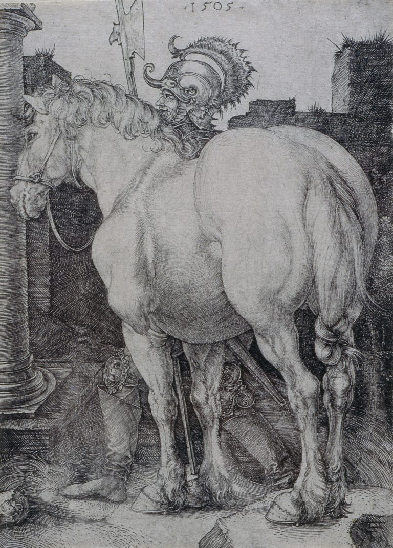 Albrecht Durer. The Great Horse, 1505. Engraving. 15.9 x 11.3 cm. Collection Irish Museum of Modern Art. Donation, Madden Arnholz Collection, 1989.