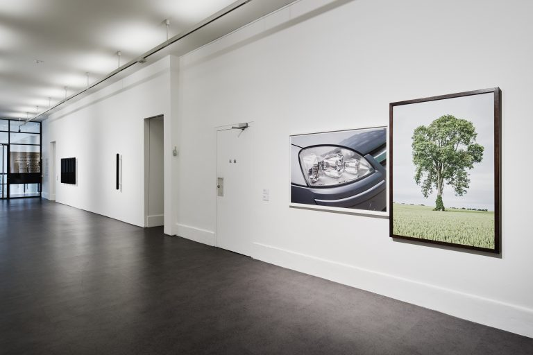 Installation view of 'IMMA Collection: Then and Now, Fergus Martin', 15 February – 29 September 2019, IMMA, Dublin. Photo by Ros Kavanagh
