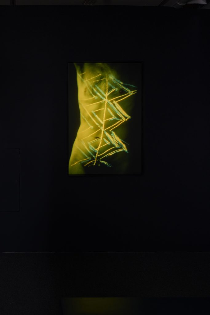 Pauline Cummins, Inis t'Oirr, 1985, Slides, sound, Dimensions variable, Collection IMMA, Purchase 2000