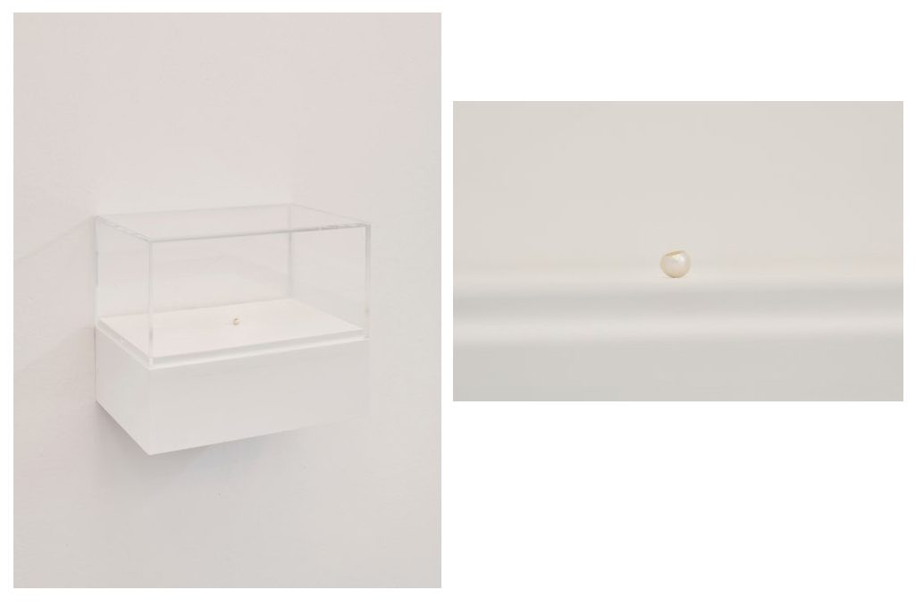 Walker and Walker. IN AN EFFORT TO UNCOVER ITS ORIGIN AND/OR IN THE PROCESS COMPROMISING IT, 2019, 11mm pearl, vitrine