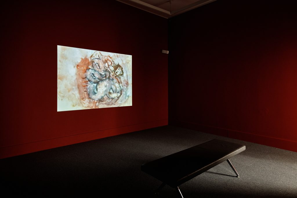 Nalini Malani, Stains, 2000, Video, Duration: 8 min, Collection Irish Museum of Modern Art, Donation, 2008