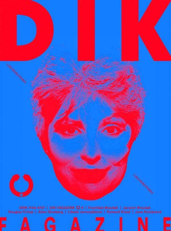 DIK Fagazine, No. 9, cover image, 2014