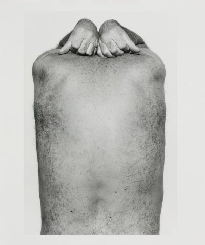Self Portrait (Back and Hands)