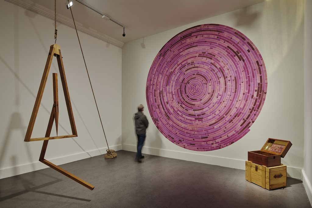 Installation view of A Consummate Joy by Bharti Kher. Photos Ros Kavanagh
