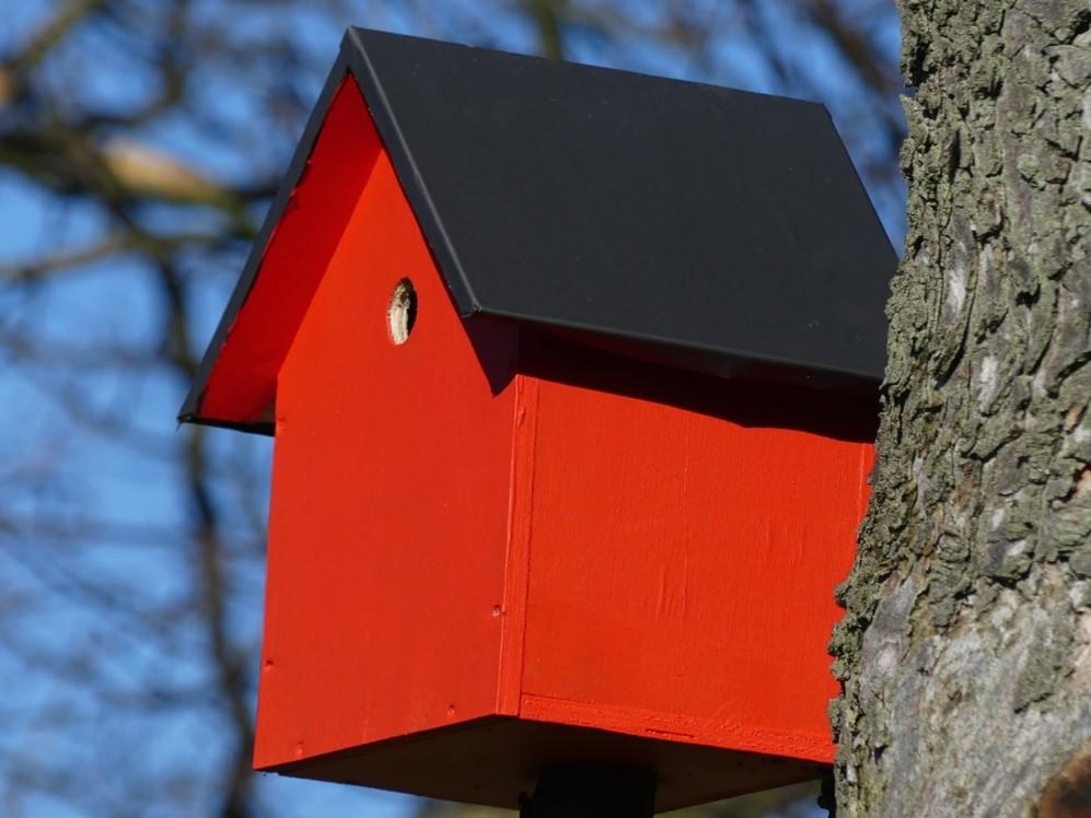 Nest Box.